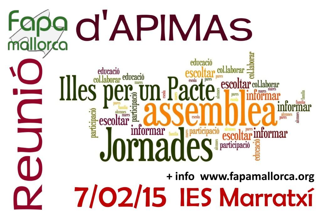 Reunio_APIMAs_7-02-15