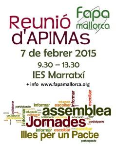 Reunio_APIMAs_7-02-15 cartell